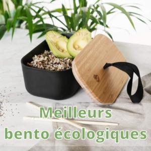 Meilleurs bento ecologique bento bambou