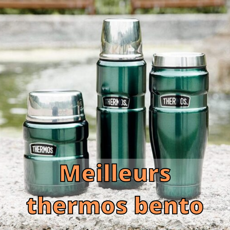 Meilleurs thermos bento